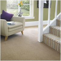 02 Plain with matching Stripe Carpet